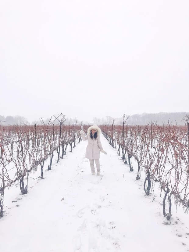 two sisters winery niagra ontario winter