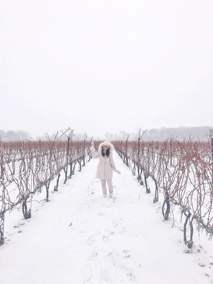 two sisters winery niagra ontario winter