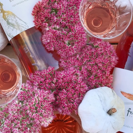 The best Ontario VQA Rose wine to drink in fall